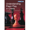 کتاب Understanding Pawn Play in Chess